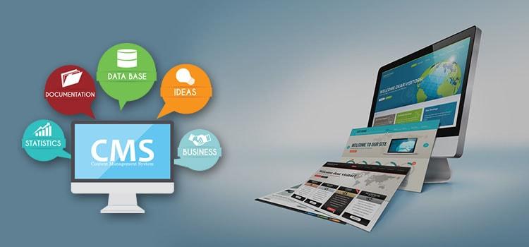 Social Media Service Provider