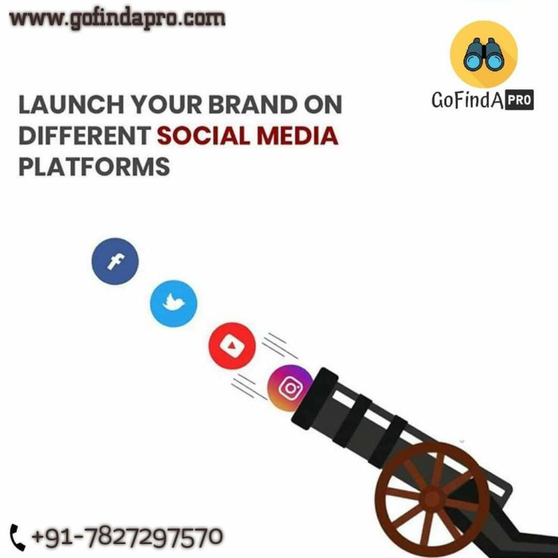 GoFindAPro Pvt Ltd