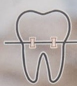 Dr.Swaroop's Dental Care Nellore ?