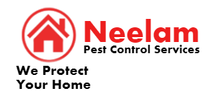 NEELAM PEST CONTROL SERVICES