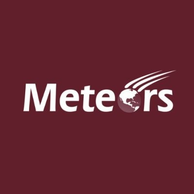Meteors Immigration Consultancy Services in Delhi