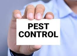 Micro Pest Control