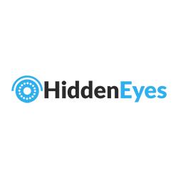 Hidden Eyes CCTV Camera & Security Systems