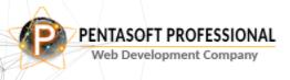 Pentasoft Professional