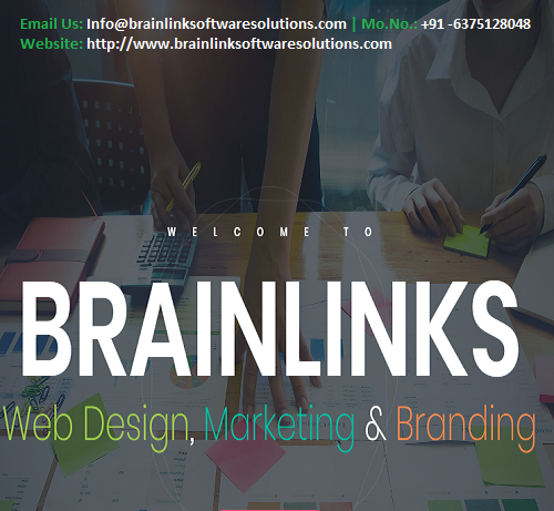 BrainLink Software Solutions Pvt. Ltd.