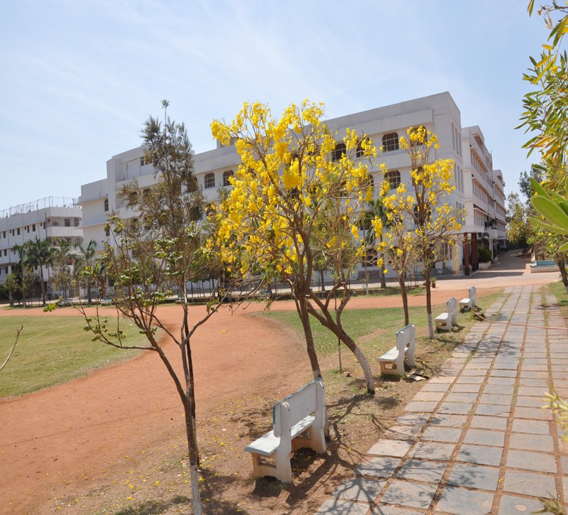 Montessori Indus E.M High School