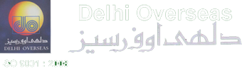 Delhi Overseas