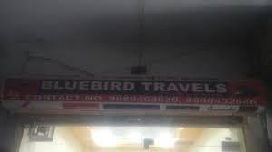 Blue Bird Travels