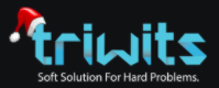 Triwits Technologies Pvt. Ltd.