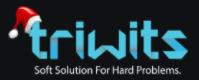 Triwits Technologies Pvt. Ltd.