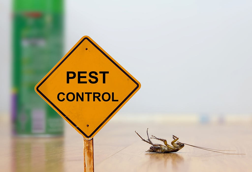 Quick Action Pest Management