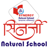 Synergy Natural School