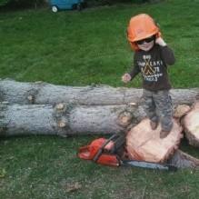 Tree Pros