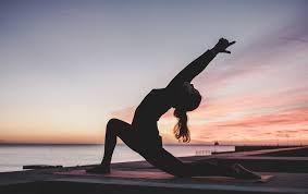 Rajhans Pratishthan Nisargoupchar Yoga Kendra