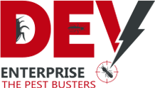 Dev Enterprise