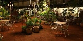 Wild Garden - The café at Amethyst