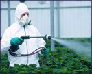 Gayatri Pest Management