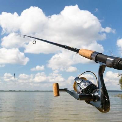 NY Harbor Fishing