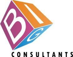 Big Consultants