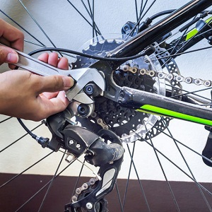 Yosemite Bicycle & Sport