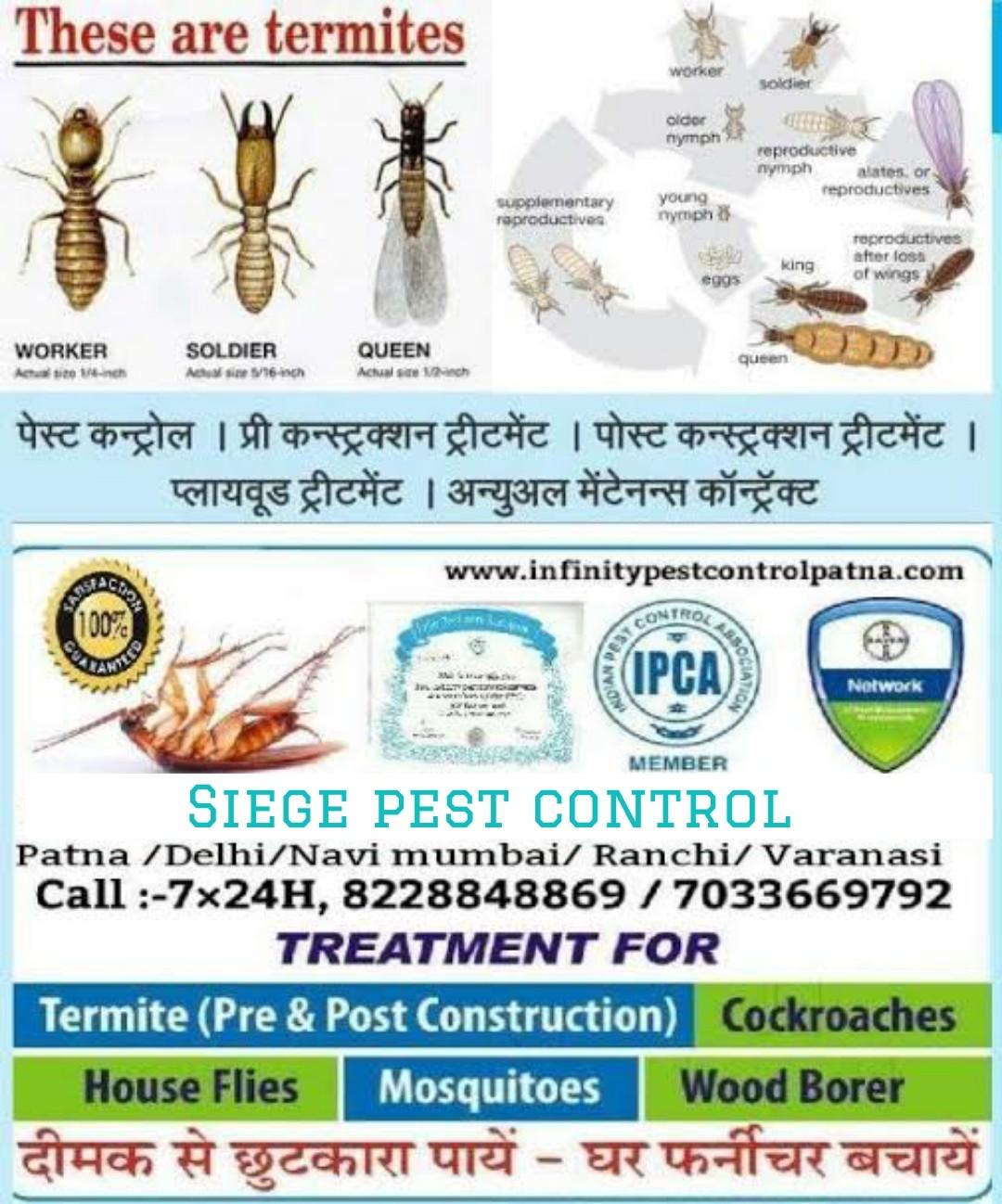 Infinity pest control