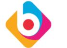 BigSense Technologies Pvt Ltd