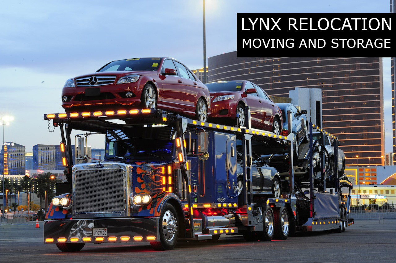 Lynx Relocation Packers And Movers Ludhiana