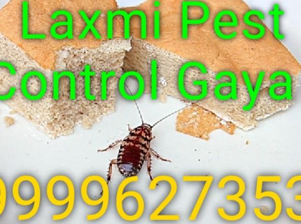Laxmi Pest Control