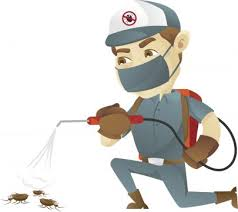 SDS Pest Control Services
