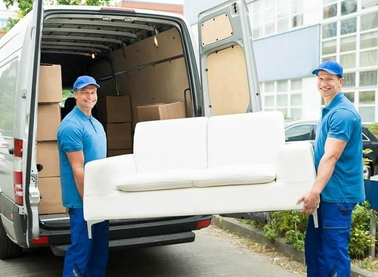 Alien Cargo Movers And Packers