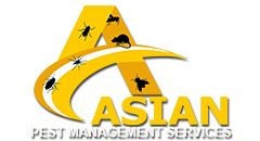 Asian Pest Management Service