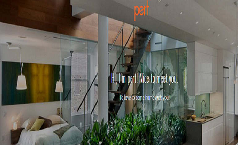Pert Info Consulting Pvt.Ltd