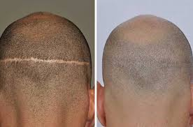 Rootz Hair