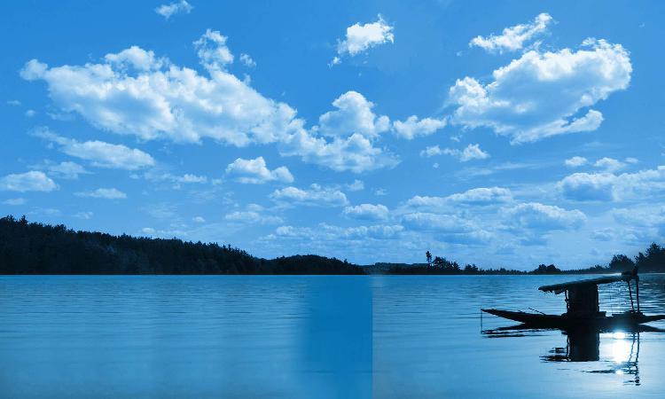 Dal Lake Tours & Travels