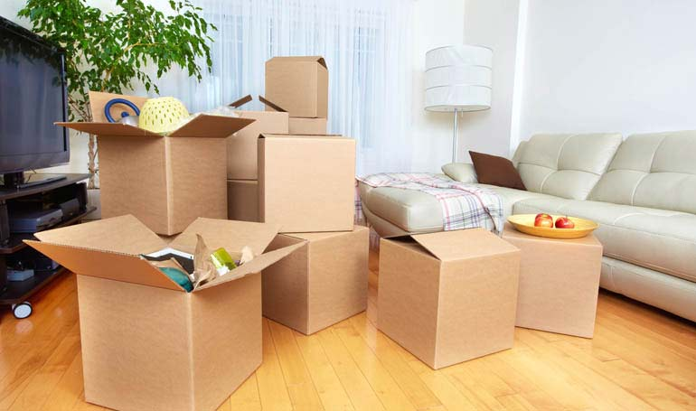 Safe & Reliable Cargo Packers And Movers