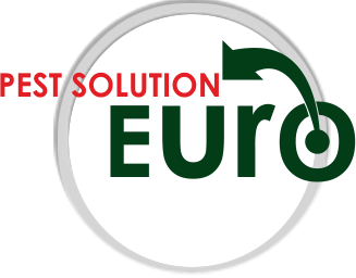 Euro Enterprises