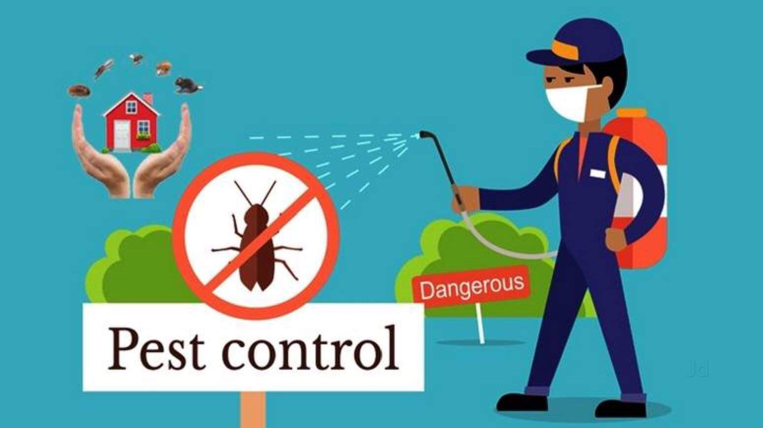 Truly Pest Solution Pvt Ltd