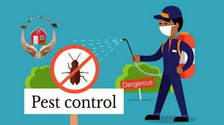 Termokil Pest Control Experts