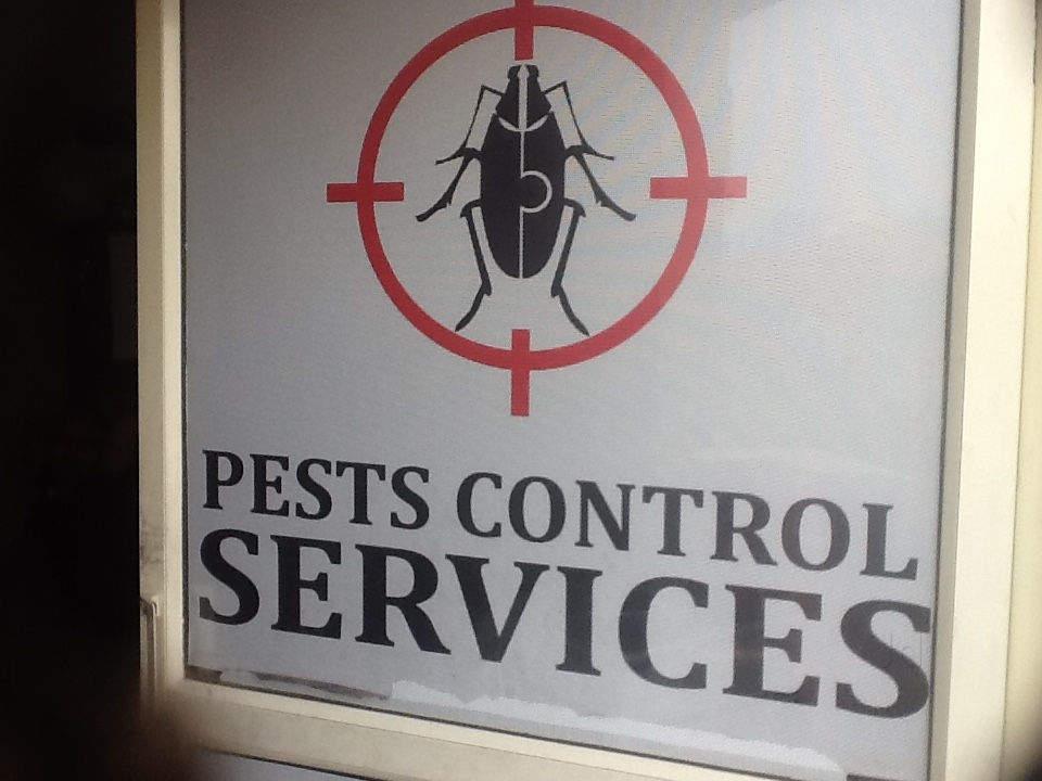 Dehradun Pest Control Service