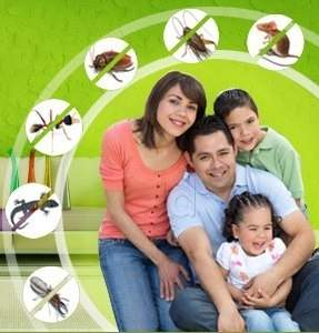 Eccentric Hi Care Pest Control Smell Free Services