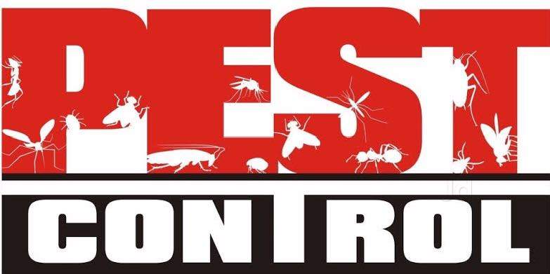 Eco Elite Pest Control Pvt Ltd