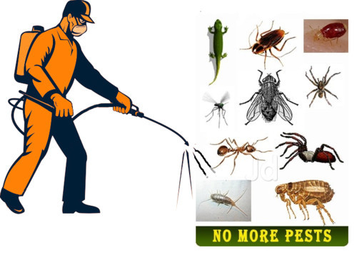 Universal High Care Pest Management Services