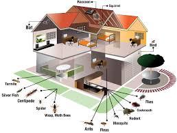 Specialist Pest Control Pvt. Ltd