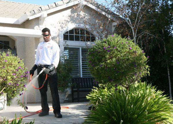 Sahil Pest Control Services
