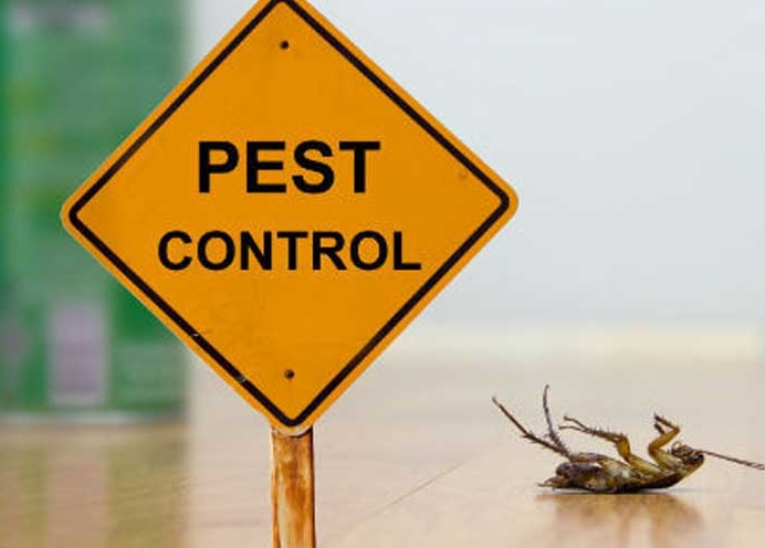 Pacific Pest Management