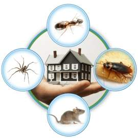 J M K Pest Control And Fumigation