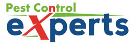 Pest Control Experts Vellore