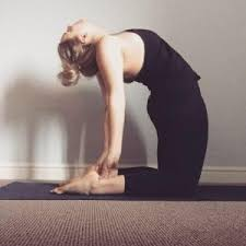 Sutra Holistic Yoga & Dance Studios